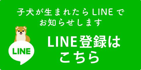 LINE登録はこちら